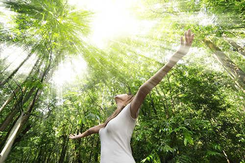 langkah ke sepuluh Cara Menambahkan Efek Sinar Matahari Melalui Pohon Dengan Photoshop
