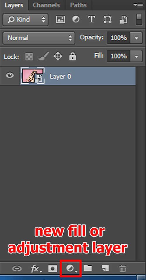 langkah ke dua Cara Mengubah Foto Menjadi Pola Dot (Pattern Of Colored Dots) Dengan Photoshop