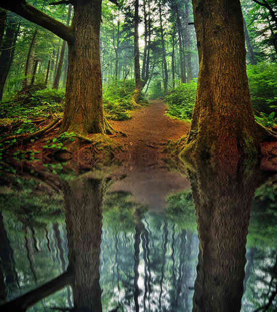 contoh hasil Cara Membuat Refleksi Pada Air Dengan Photoshop