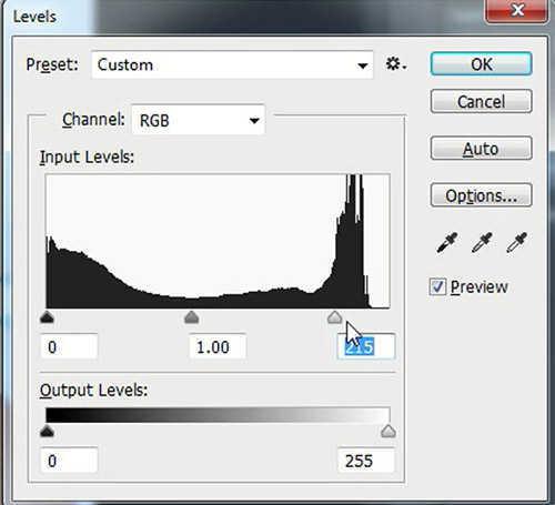 langkah ke dua Cara Mengubah Foto Jadi Kartun dengan Adobe Photoshop